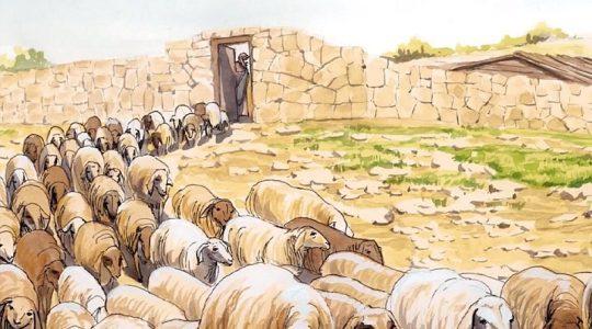 Čtvrtá neděle velikonoční – pozdrav dětem